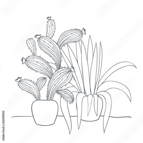 Fototapeta houseplants with potted isolated icon obraz na płótnie