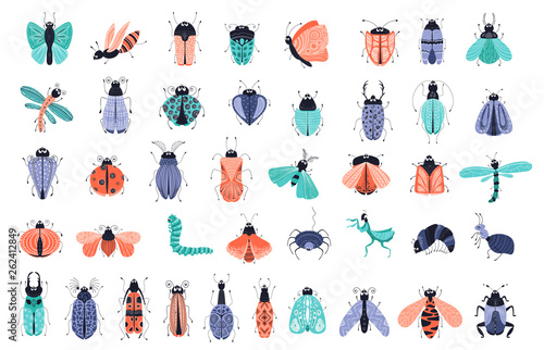 Vector cartoon bugs Fototapeta