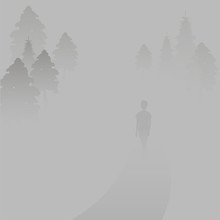 Landscape In The Mist. The Man Is Walking In A Fog. Landscape With Haze. Woman In The Forest