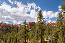Landscape On The Bryce Canyon ...