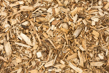 Bark Wood Chips For Landscaping - Top View - Abstract Background