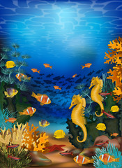 Fototapeta na wymiar Underwater background with seahorse and tropical fish, vector illustration