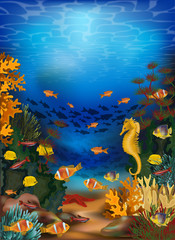 Fototapeta na wymiar Underwater card with algae and seahorse, vector illustration