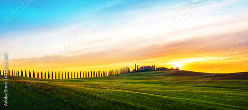 Fotografie, Obraz  Beautiful magical landscape with a field and a line of cypress in Tuscany, Italy