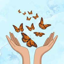 Hands Releasing Orange Monarch Butterflies. Vector Illustration
