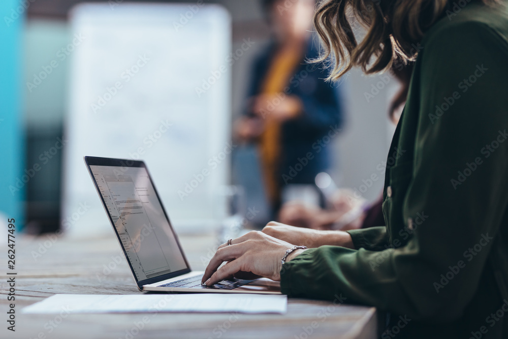 Fototapety, obrazy: Female executive using laptop during a presentation