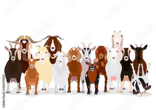 Carta da parati various goats group