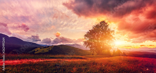 Tuinposter Lichtroze fantastic colorful landscape. overcast clouds glowing in sunlight