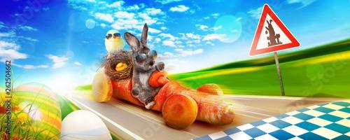 Keuken foto achterwand Eigen foto Osterhase unterwegs zum Osterfest!