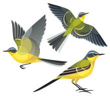 Stylized Birds - Yellow Wagtail