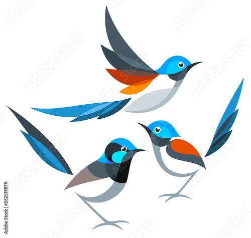 Valokuvatapetti Stylized Birds - Fairywrens