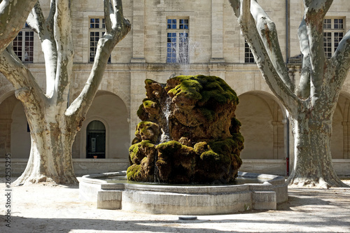 Photo fontaine moussue
