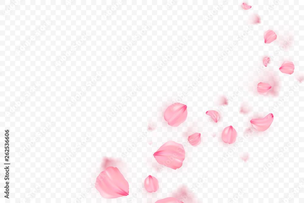 Fototapeta Pink sakura falling petals vector background. 3D romantic illustration. Transporent banner with sakura. Love card