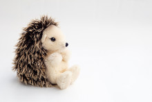 Detail Of Stuffed Hedgehog In White Background