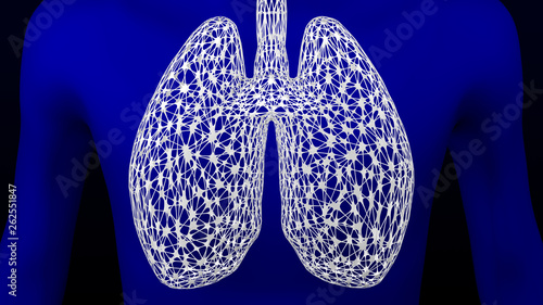 Concept: lungs. 3D rendering. Wallpaper Mural
