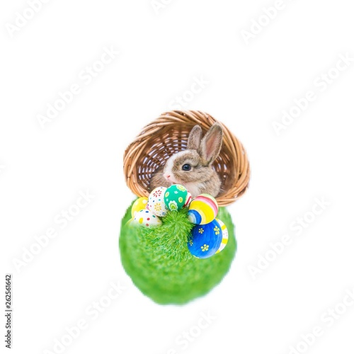 easter bunny with egg on white background