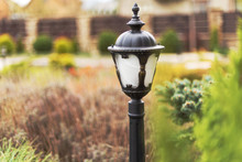 Forged Street Lights, For The Testimony Of A Courtyard With Landscape Design With Various Ornamental Plants And Trees, And Other Street Lighting On The Private Home.
