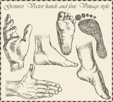 Hand And Foots In Retro Style - Vector Illustration