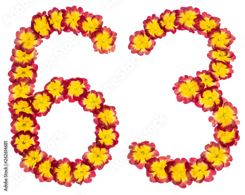 Fotografia  Numeral 63, sixty three, from natural flowers of primula, isolated on white back