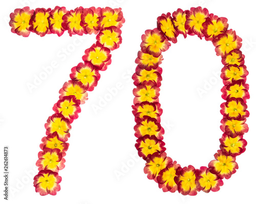Photographie  Numeral 70, seventy, from natural flowers of primula, isolated on white backgrou
