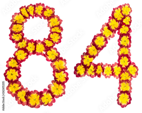 Fotografia  Numeral 84, eighty four, from natural flowers of primula, isolated on white back
