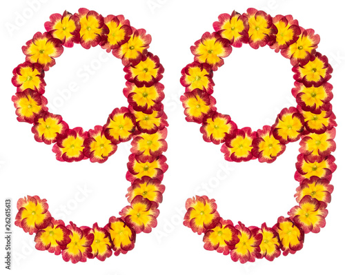 Photographie  Numeral 99, ninety nine, from natural flowers of primula, isolated on white back