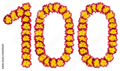 Fotografía  Numeral 100, one hundred, from natural flowers of primula, isolated on white bac