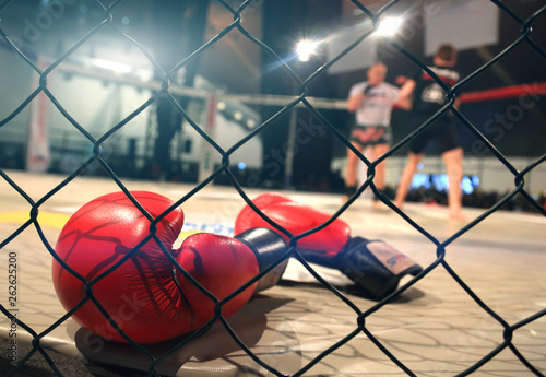 Fotografie, Obraz MMA fight scene with boxing gloves in foreground