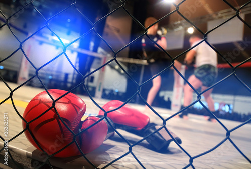 Photo  MMA fight scene with boxing gloves in foreground