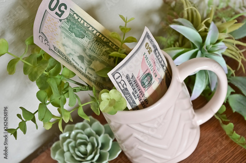 Photographie  Two Fifty Dollar Bills in a Pink Mug Surrounded by Succulents