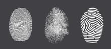 Fingerprint Twisted Lines Sign...