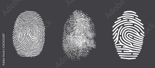 Fotografía Fingerprint twisted lines sign isolated on white vector illustration in flat design