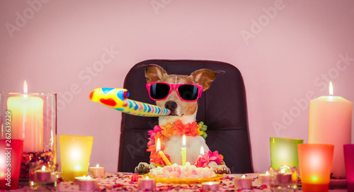 Canvas Prints Crazy dog happy birthday dog