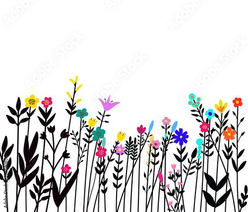 Photo  Floral seamless border of a wild flowers and herbs on a white background