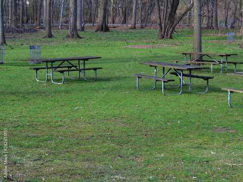 Strange Picnic Tables In Spring Park Benches And Picnic Tables Caraccident5 Cool Chair Designs And Ideas Caraccident5Info