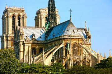 Notre Dame de Paris carhedral on the la seine riverside