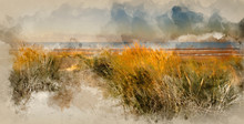 Watercolor Painting Of Beautiful Sunrise Over Sand Dunes System On Yellow Sand Golden Beach