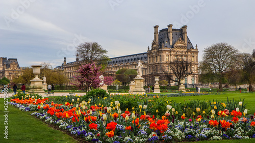 Poster de jardin Paris Marvelous spring Tuileries garden and view at the Louvre Palace Paris France. April 2019.