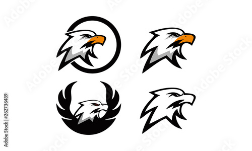 Photo  logo set eagle