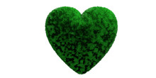 Green Grassy Hair Heart Isolat...