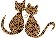Leo Kätzchen Leopard Katzen V...