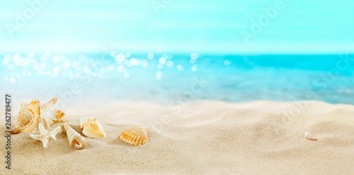 Photo  View of the sandy beach. Shells in the sand.