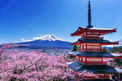 Fényképezés Cherry blossoms in spring, Chureito pagoda and Fuji mountain in Japan
