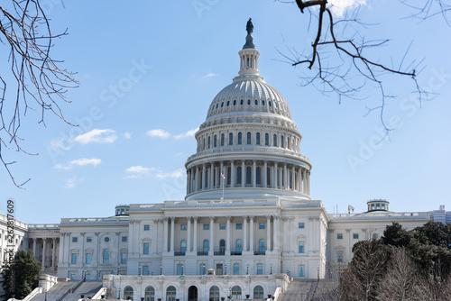 Slika na platnu Capitol