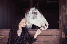 Attractive Charming Woman Touching Beautiful Horse In Stall