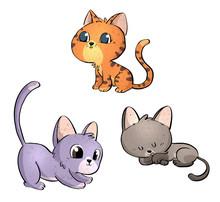 Gatos En Diferentes Poses