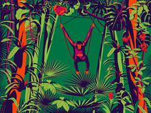 Monkey Sitting On A Liana In The Rainforest. Handmade Drawing Vector Illustration. Pop Art Minimalist Style.
