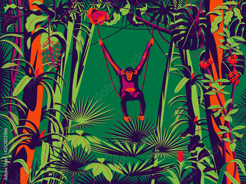 Obraz Monkey sitting on a liana in the rainforest. Handmade drawing vector illustration. Pop art minimalist style. - fototapety do salonu
