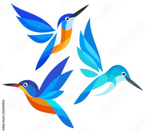 Cuadros en Lienzo Stylized Birds in flight - Kingfishers