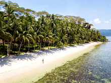 Aerial View Of A Woman Walking In A Sandy Beach, Palm Trees An Emerald Waters In White Beach, The Philippines